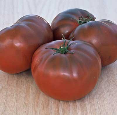 Seedman\'s Tomato Seed Supply